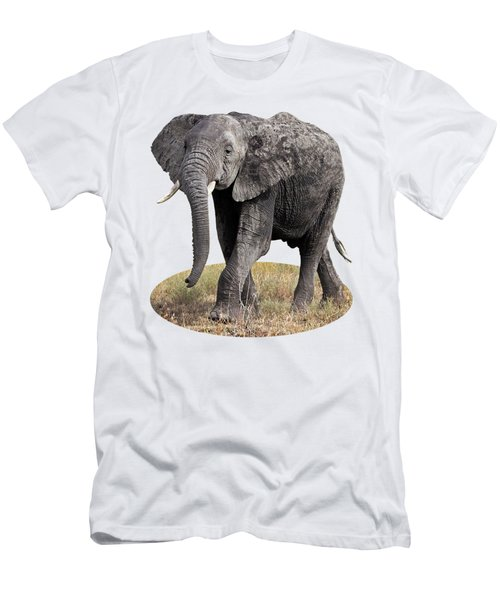 African Elephant Happy And Free Men's T-Shirt (Slim Fit) by Gill Billington
