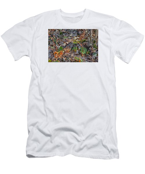 Camouflaged Plumage With Fallen Leaves Men's T-Shirt (Slim Fit) by Asbed Iskedjian