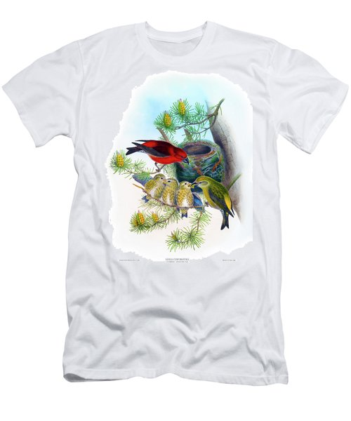 Common Crossbill Antique Bird Print John Gould Hc Richter Birds Of Great Britain  Men's T-Shirt (Slim Fit) by John Gould - HC Richter