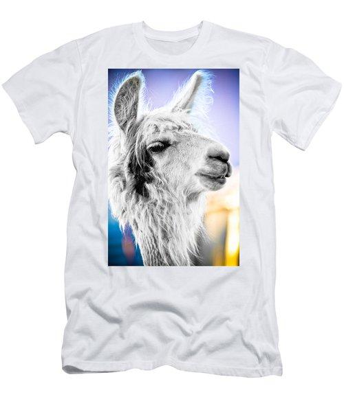 Dirtbag Llama Men's T-Shirt (Slim Fit) by TC Morgan