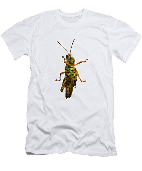 Grasshopper II Men's T-Shirt (Slim Fit) by Gary Adkins