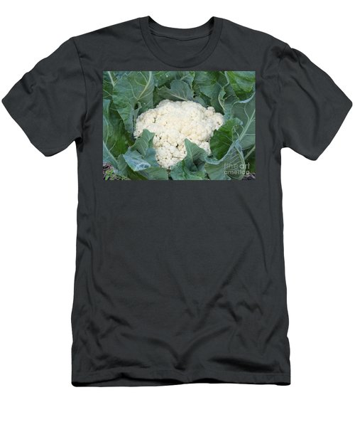 Cauliflower Men's T-Shirt (Slim Fit) by Carol Groenen