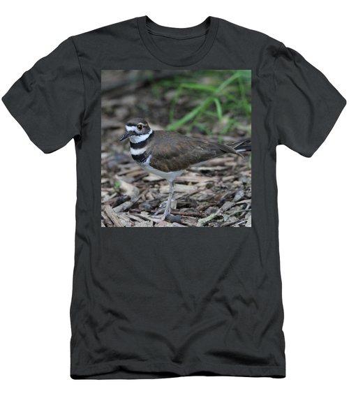 Killdeer Men's T-Shirt (Slim Fit) by Dan Sproul