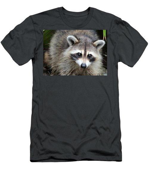 Raccoon Eyes Men's T-Shirt (Slim Fit) by Carol Groenen