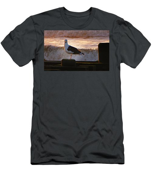 Sittin On The Dock Of The Bay Men's T-Shirt (Slim Fit) by David Dehner