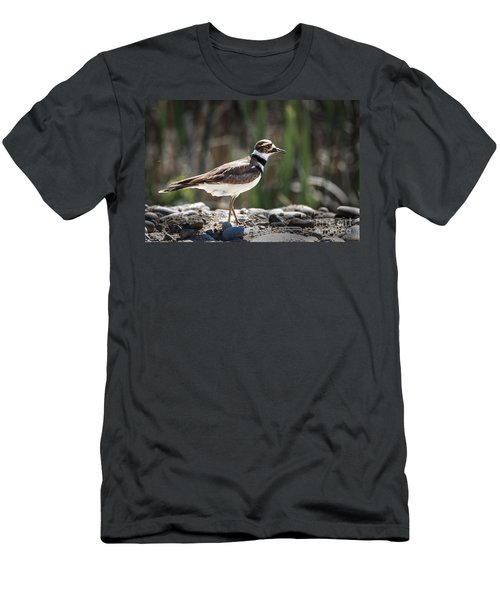 The Killdeer Men's T-Shirt (Slim Fit) by Robert Bales
