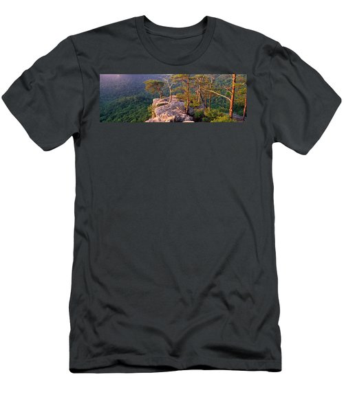 Trees On A Mountain, Buzzards Roost Men's T-Shirt (Slim Fit) by Panoramic Images