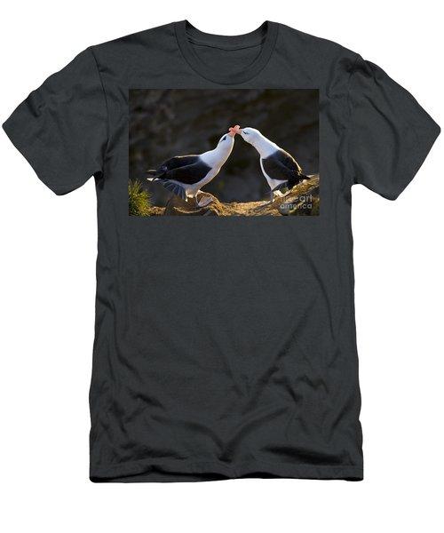 Black-browed Albatross Couple Men's T-Shirt (Slim Fit) by Jean-Louis Klein & Marie-Luce Hubert