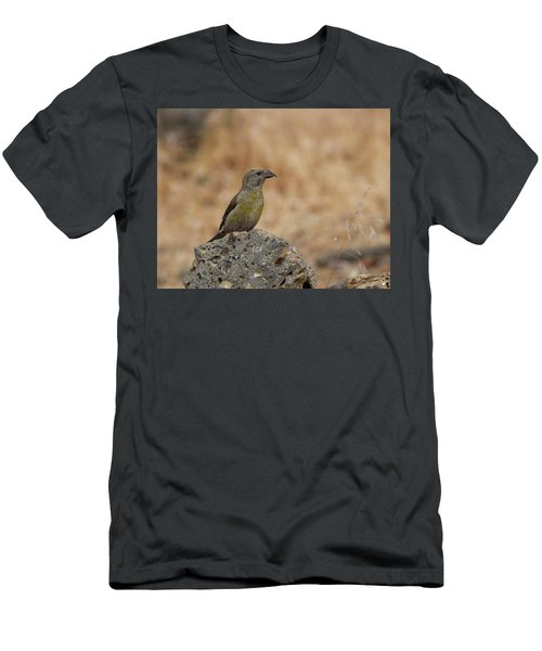 Female Red Crossbill Men's T-Shirt (Slim Fit) by Doug Lloyd