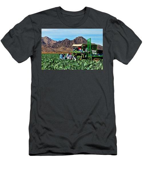 Harvesting Broccoli Men's T-Shirt (Slim Fit) by Robert Bales