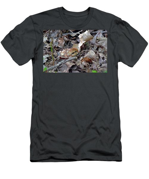 It's A Baby Grouse Men's T-Shirt (Slim Fit) by Asbed Iskedjian