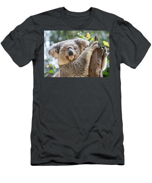 Koala On Tree Men's T-Shirt (Slim Fit) by Jamie Pham