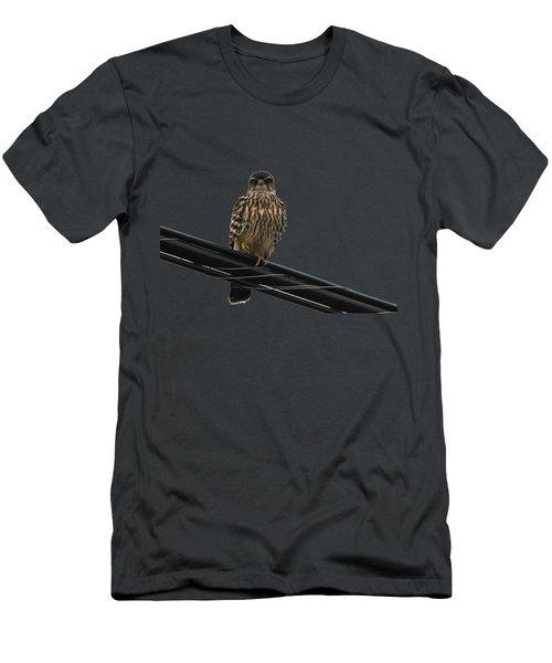 Magical Merlin Men's T-Shirt (Slim Fit) by Debbie Oppermann
