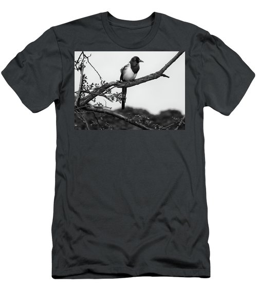 Magpie  Men's T-Shirt (Slim Fit) by Philip Openshaw