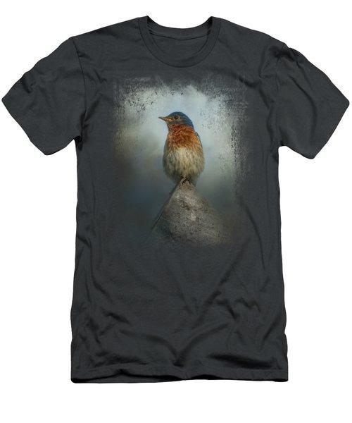 The Highest Point Men's T-Shirt (Slim Fit) by Jai Johnson