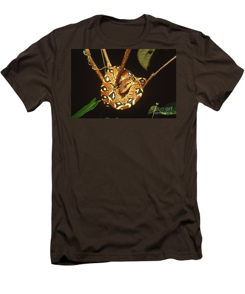 Boa Constrictor Men's T-Shirt (Slim Fit) by Art Wolfe