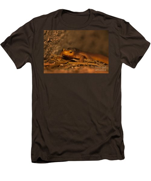 California Newt Men's T-Shirt (Slim Fit) by Ron Sanford