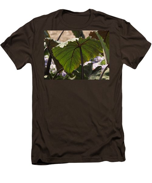 Elephant Ear Men's T-Shirt (Slim Fit) by James Peterson
