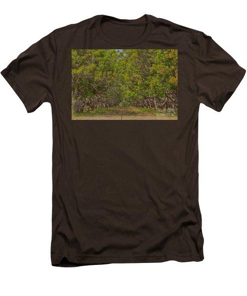 Mango Orchard Men's T-Shirt (Slim Fit) by Douglas Barnard