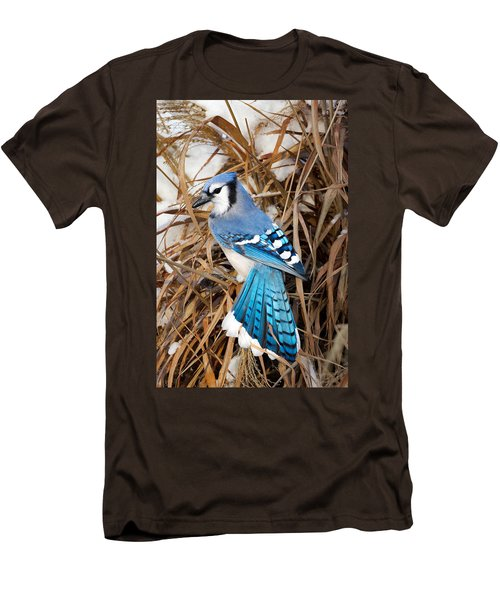 Portrait Of A Blue Jay Men's T-Shirt (Slim Fit) by Bill Wakeley