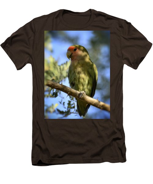 Pretty Bird Men's T-Shirt (Slim Fit) by Saija  Lehtonen
