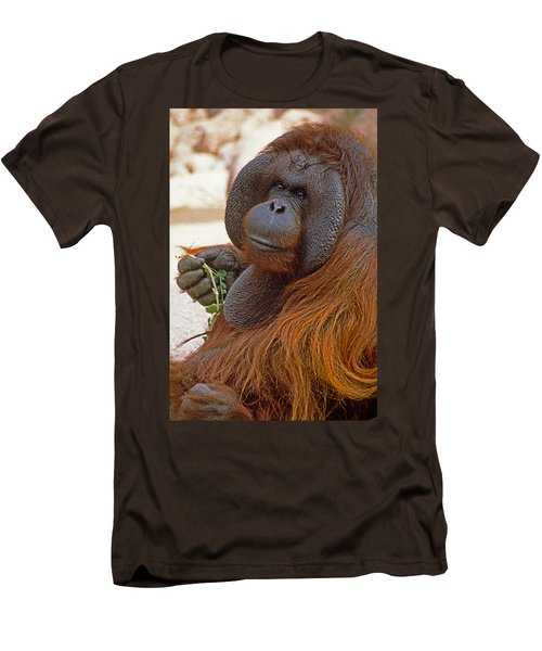 Big Daddy Men's T-Shirt (Slim Fit) by Michele Burgess