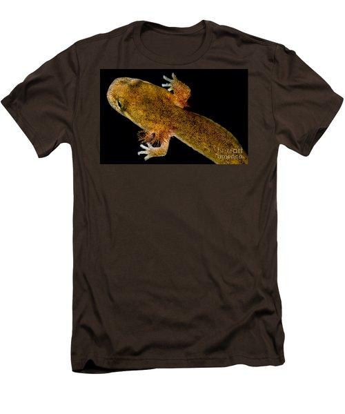 California Giant Salamander Larva Men's T-Shirt (Slim Fit) by Dant� Fenolio