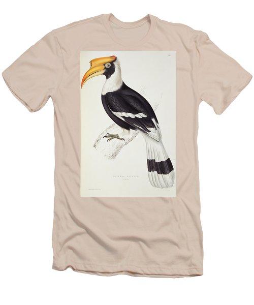 Great Hornbill Men's T-Shirt (Slim Fit) by John Gould