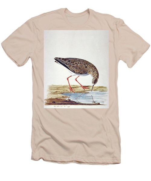 Curlew Sandpiper Men's T-Shirt (Slim Fit) by Charles Collins
