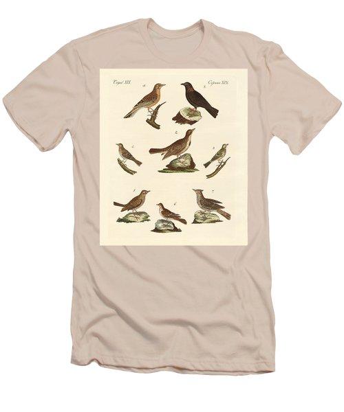 Different Kinds Of Larks Men's T-Shirt (Slim Fit) by Splendid Art Prints