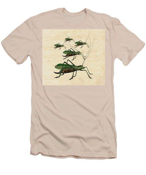 Grasshopper Parade Men's T-Shirt (Slim Fit) by Antique Images