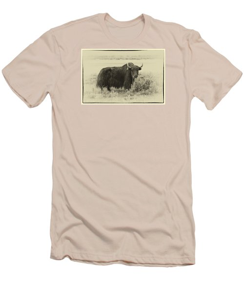 Yaks...the Official Animal Of Tibet Men's T-Shirt (Slim Fit) by Alan Toepfer