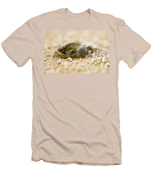 Close Up Tiger Salamander Men's T-Shirt (Slim Fit) by Mark Duffy