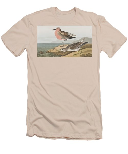 Red-breasted Sandpiper  Men's T-Shirt (Slim Fit) by John James Audubon