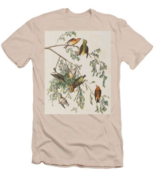 American Crossbill Men's T-Shirt (Slim Fit) by John James Audubon