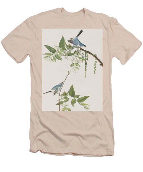 Blue Grey Flycatcher Men's T-Shirt (Slim Fit) by John James Audubon