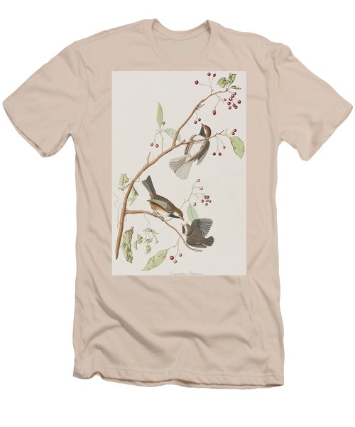 Canadian Titmouse Men's T-Shirt (Slim Fit) by John James Audubon