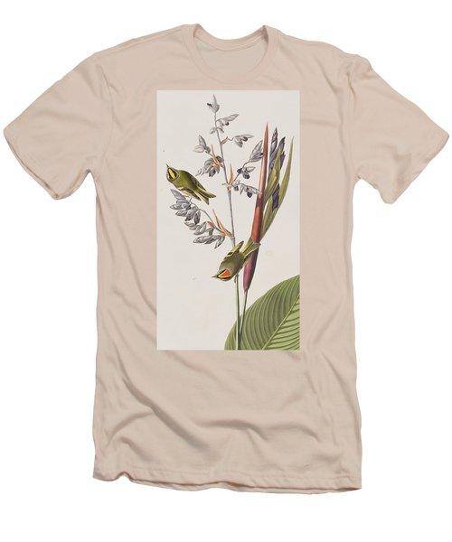 Golden-crested Wren Men's T-Shirt (Slim Fit) by John James Audubon