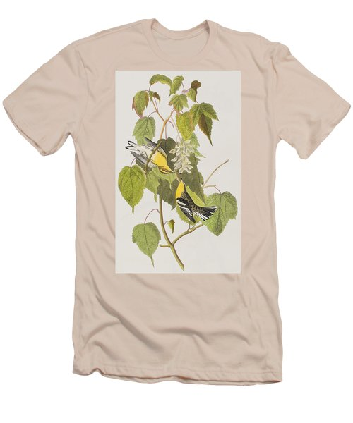 Hemlock Warbler Men's T-Shirt (Slim Fit) by John James Audubon