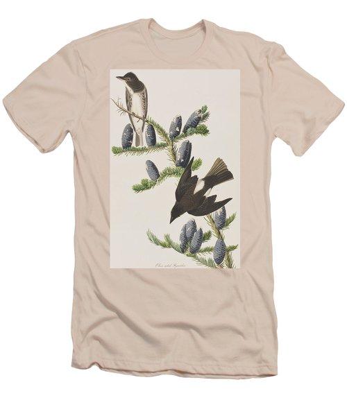Olive Sided Flycatcher Men's T-Shirt (Slim Fit) by John James Audubon