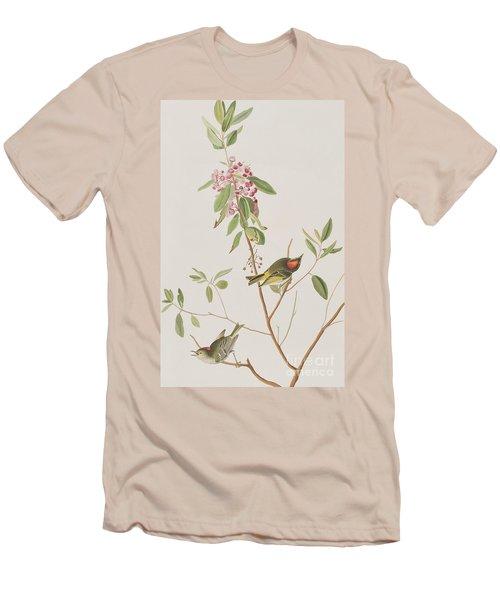 Ruby Crowned Wren Men's T-Shirt (Slim Fit) by John James Audubon