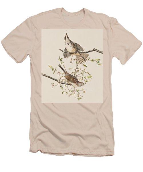 Song Sparrow Men's T-Shirt (Slim Fit) by John James Audubon