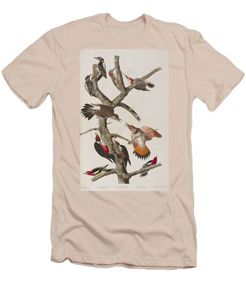 Woodpeckers Men's T-Shirt (Slim Fit) by John James Audubon