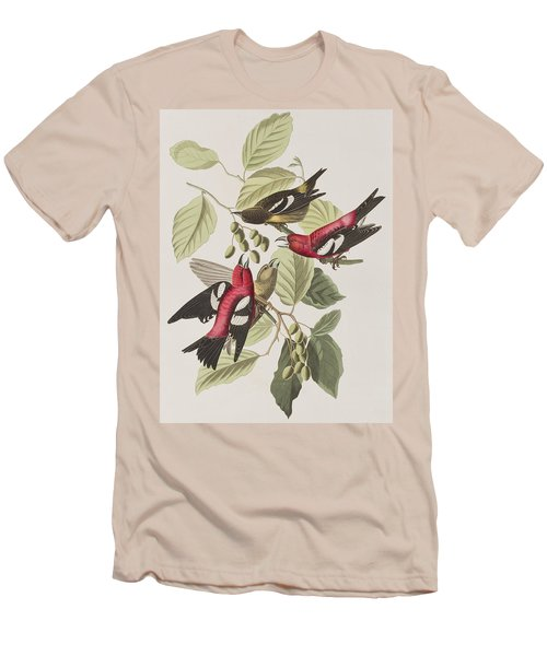 White-winged Crossbill Men's T-Shirt (Slim Fit) by John James Audubon