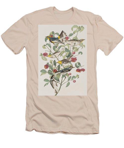 Audubons Warbler Hermit Warbler Black-throated Gray Warbler Men's T-Shirt (Slim Fit) by John James Audubon