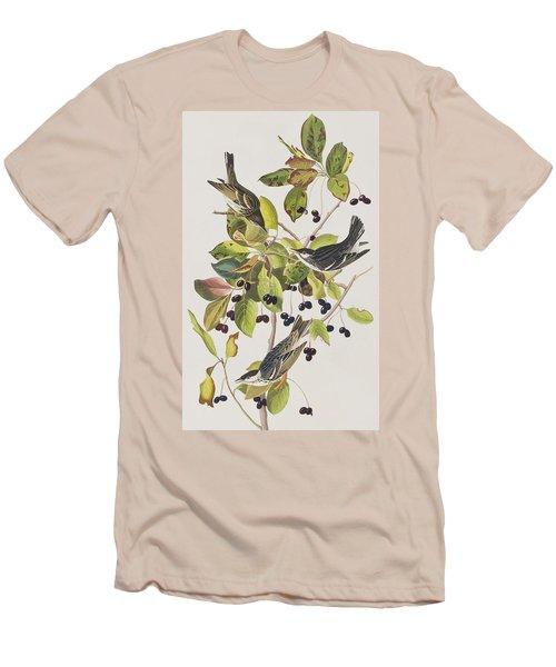 Black Poll Warbler Men's T-Shirt (Slim Fit) by John James Audubon