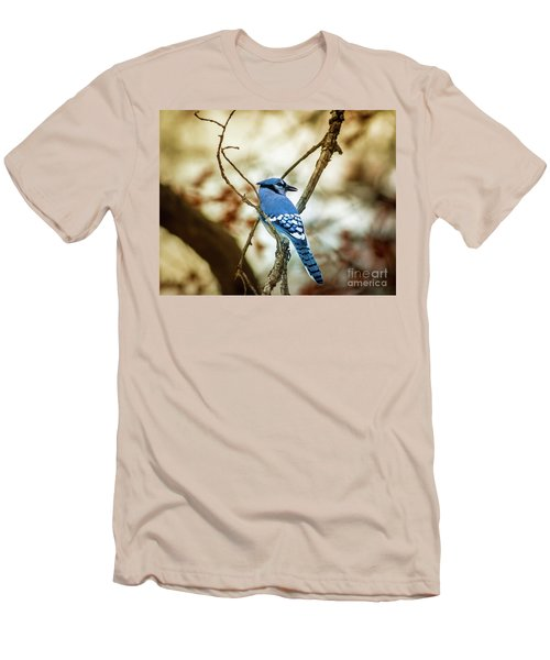 Blue Jay Men's T-Shirt (Slim Fit) by Robert Frederick