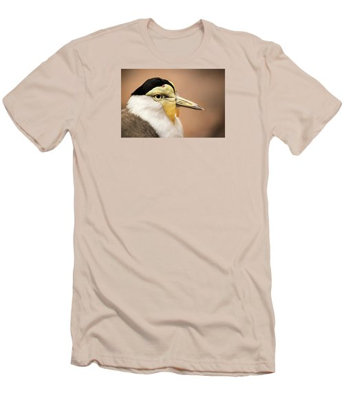 Masked Lapwing Men's T-Shirt (Slim Fit) by Don Johnson