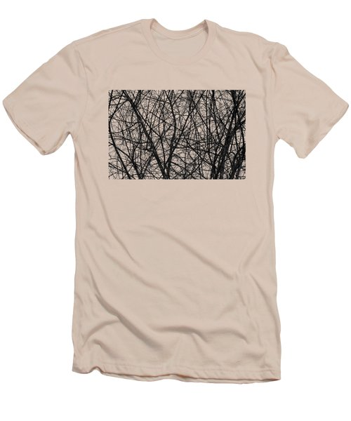 Natural Trees Map Men's T-Shirt (Slim Fit) by Konstantin Sevostyanov