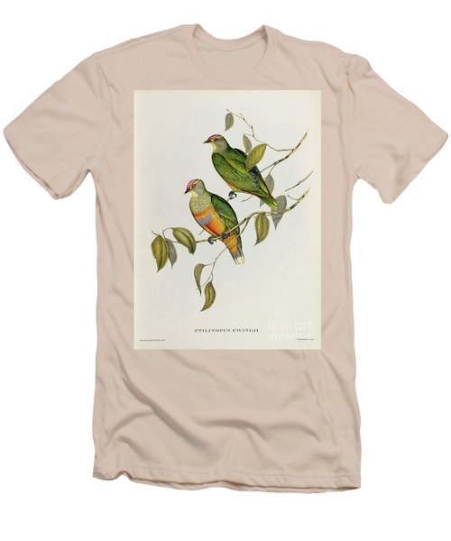Ptilinopus Ewingii Men's T-Shirt (Slim Fit) by John Gould